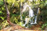 Утро на Бачковски водопад ; Comments:3