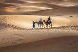 Сахара, Мароко. ; comments:20