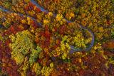 Есенна витошка гора ; comments:31