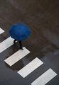 Blue Umbrella ; comments:25
