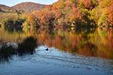 Езерата Плитвице ; Comments:4