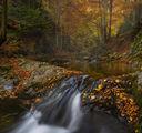Есенна палитра по Стара река... ; comments:14