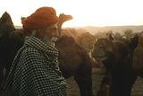 за камилите и хората ; comments:16