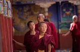 Будистки монаси ; comments:11