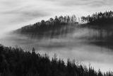 Родопа планина ; comments:29