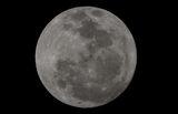 Най-ярката луна от 60 години насам ; comments:2