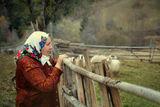 Да живееш в Родопите ; comments:11