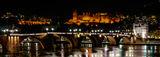 Heidelberg Castle ; comments:7