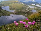 Невероятната природа на България ; comments:10