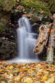 Малко водопадче в гората ; Comments:4