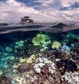 ГБР - Големият бариерен риф ; comments:12