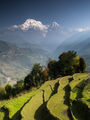 Връх Анапурна(8091 m) - Хималаи - Непал ; Comments:17
