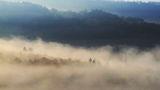 Цариградски мъгли ; Коментари:9