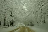 Зима ; comments:13