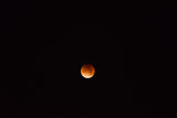 BLOODY/BLUE/SUPER MOON ; comments:2