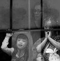 През прозореца ; comments:8