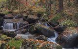 Владайската Река ; Comments:26