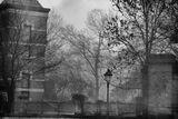 Le Cimetière de Bruxelles ; Comments:8