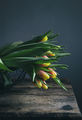 Цветна пролет ; comments:8