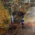 Есенно настроение ; comments:22