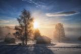 7 сутирнта - Орцево ; comments:23