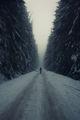 В живота сам избираш пътя свой.... ; Comments:19