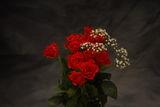 В името на розата ; comments:3