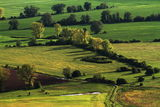 Зелените поля... ; Comments:19