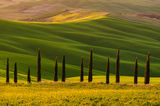 Тосканска идилия ; comments:32