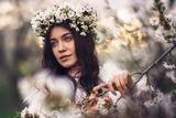 Пролетно ; comments:18