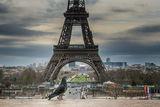 Парижанин ; comments:4