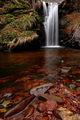 "Из серията ""Старопланински водопади"" ; comments:9"