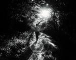 Пътят към слънцето... ; comments:7