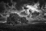 В очакване на бурята ; comments:16