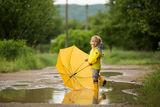 От дъждецът, ах, нас не ни е страх! ; Comments:11