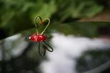 Всичко е любов ; comments:6