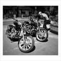 """""""Любопитство"""", портрети от улицата ; Comments:24"""