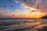 Празник на небето .. ; Comments:11