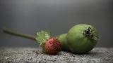 Плодова салата ; comments:2