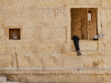 Jaisalmer Fort ; comments:11