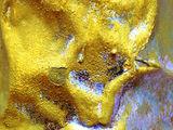 Златният Телец ; comments:17