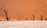 Namib ; comments:20
