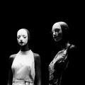 Elegant Aliens 1 ; comments:2