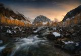 Есен в Алтай ; comments:31