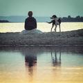 В края на деня, накрай брега... ; Comments:8
