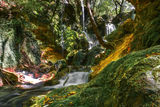 Бачковски водопад ; comments:2