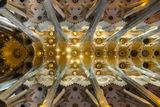 """Сводът на базиликата """"Светото семейство"""" ; comments:9"""