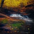 Есен в Копренския балкан ; comments:24