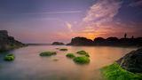 Морска милувка ; Comments:19
