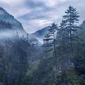 Мъгли от Родопите ; comments:15